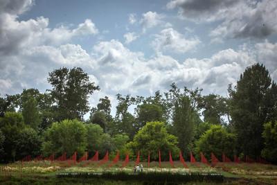 """Jardin Millésimé - Label """"Jardin Remarquable"""" 2020 - © Solstice"""